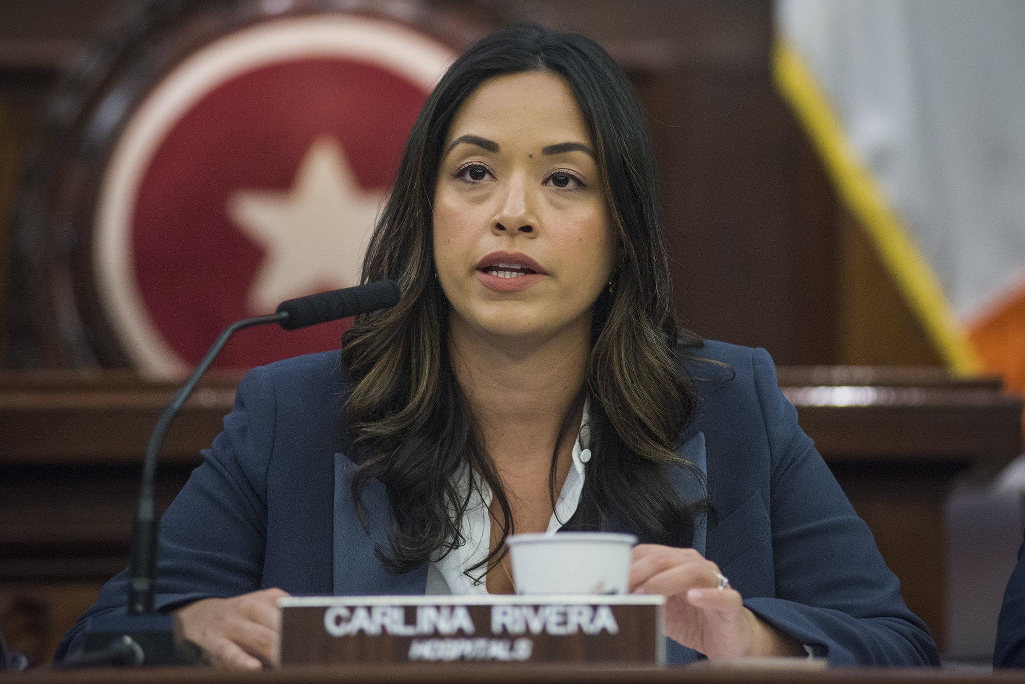 New York City Councilmember Carlina Rivera at Feb. 28 Immigration and Hospitals hearing.